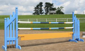 multi-color horse jump with Dapple Equine horse jump cups