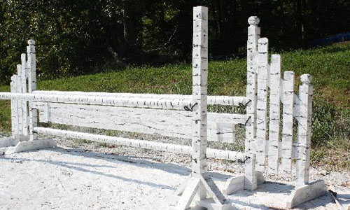 birch finish horse jump with Dapple Equine horse jump cups